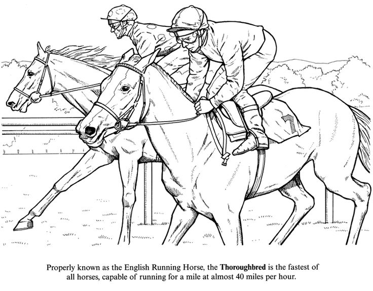 horse racing color pages | Horse Coloring Page of Racing Thoroughbreds