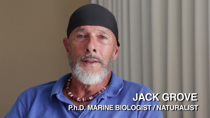 Sea Shepherd Science – Biologist Jack Grove on Sea Shepherd and Preservi...