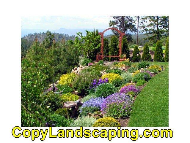 Cool info on  Landscape Design Using Shrubs
