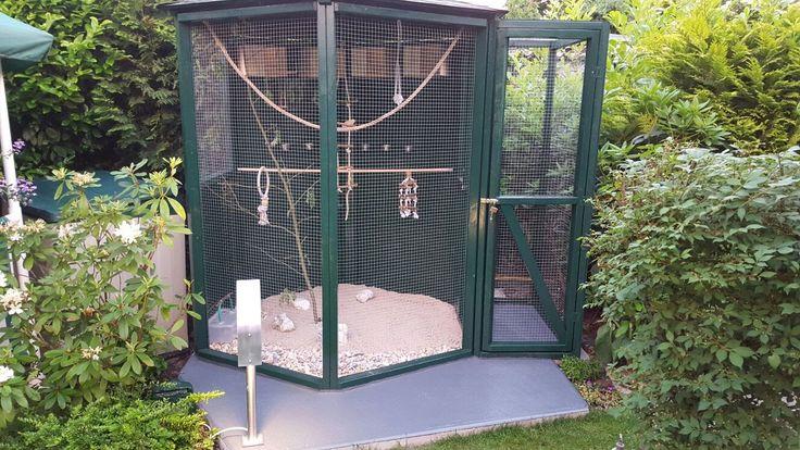 """Vogelvoliere 6-eckig selber bauen - Mein Nachbar wollte eine Vogelvoliere kaufen um """"Unzertrennliche"""" zu halten. 6- oder 8-eckig soll die Vogelvoliere sein."""