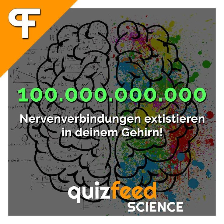 100.000.000.000 Nervenverbindungen existieren in deinem Gehirn! Wissen clever verpackt!  #gehirn #mensch #nerven #biologie #körper #schlau #lernen #schule #studium #medizin #fakt