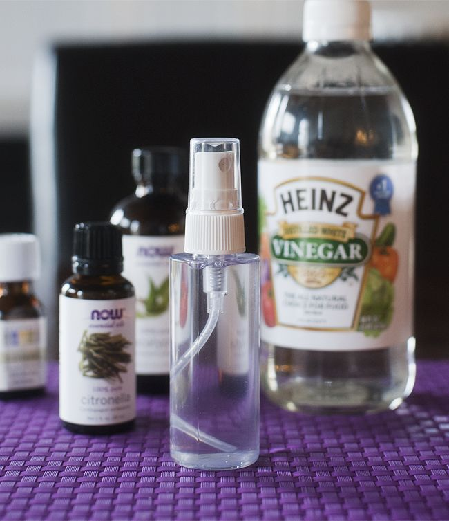 Natural mosquito and tick repellent