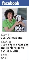 JLS Dalmatians - Dalmatian Show Exhibitors & Hobby Breeders of Show, Pet, Obedience or Performance, Lindsborg, Kansas