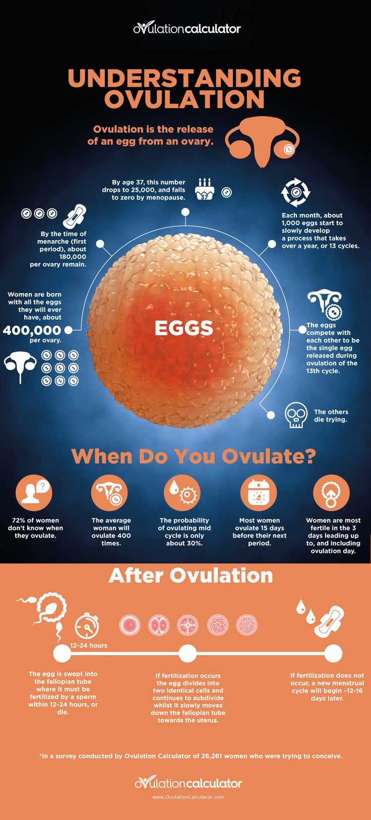 Ovulation date or dating scan - Craig Sewell