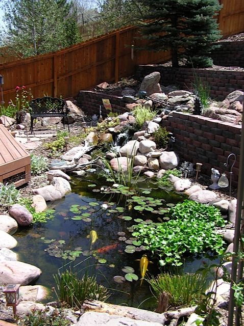 Water Retaining Pond : Best images about water features through walls on pinterest