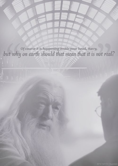 ha he totally looks like Gandalf in this one. o-o: Hp Quotes, Dumbledore Quotes, Favorite Harry, Fave Quotes, Favorite Quotes, Harry Potter Books, Albus Dumbledore, Harry Potter Quotes, Best Quotes
