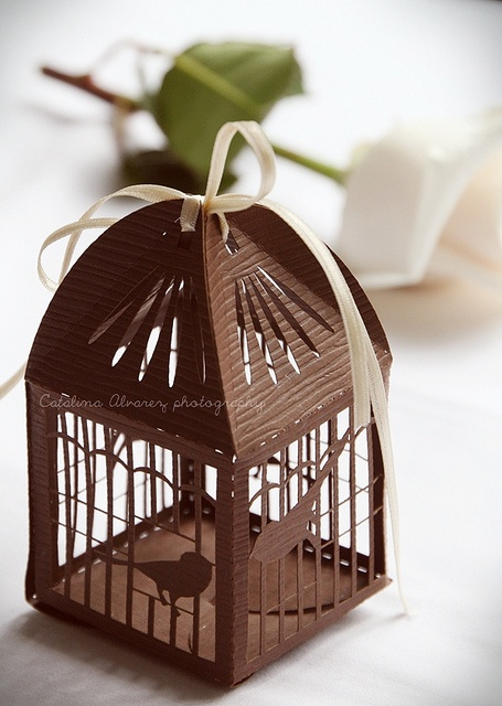 ~` paper cage `~ must make