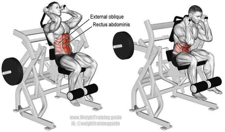 Machine Leg Raise Crunch An Isolation And Pull Exercise