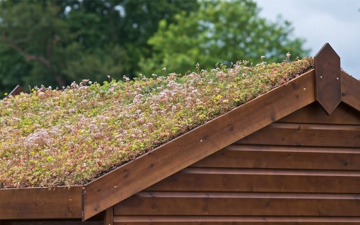 How To Build A Roof Garden With Images Green Roof System