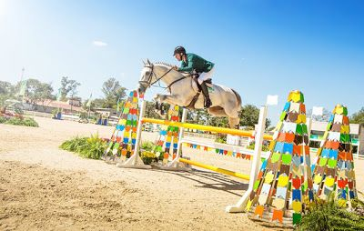 Rio 2016 Olympic Equestrian schedule