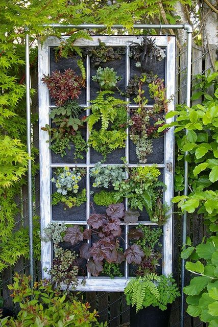 I always see old windows.  Next time I can get one cheap I'll pick it up.  I like the visual this would create as well as spatial interest.  Love fence art!  Want to do it.