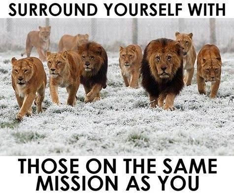 Surround yourself with those who have the same mission