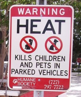 Temperature in a car rises to 150 degree in 15 minutes. Don't keep your pet/kid in the care in the hot summer days!