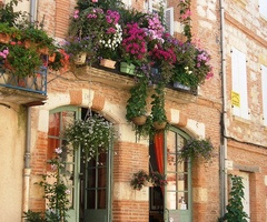 Window gardensBeautiful Flower, Spring Flower, Windowboxes, Gardens Can, Windows Boxes, Balconies, Hanging Baskets, Flower Boxes, Window Boxes