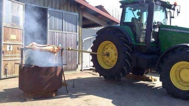 Spanferkel grillen mal anders - Agrarfotos - Fotos/Agrarvideos - top agrar online