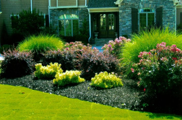 Easy rock garden designs complete master plans we are for Easy rock garden designs
