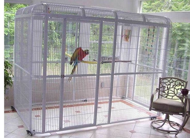 Walk in Parrot Cage Aviary - Centurion Cages - PLATINUM 110 x62 macaw / cockatoo #CenturionCages