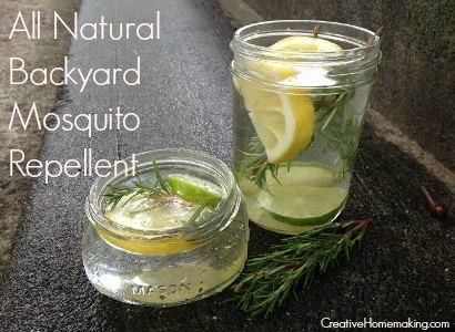 Easy All Natural Outdoor Mosquito Repellent Perfect For Entertaining On  Summer Evenings.