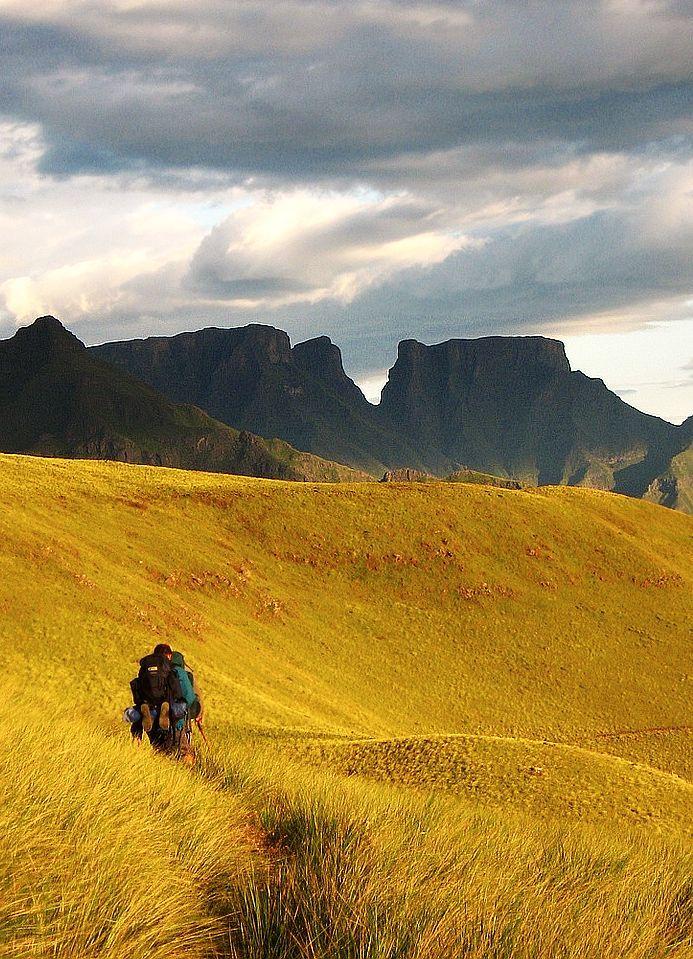 Injasuthi, South #Africa
