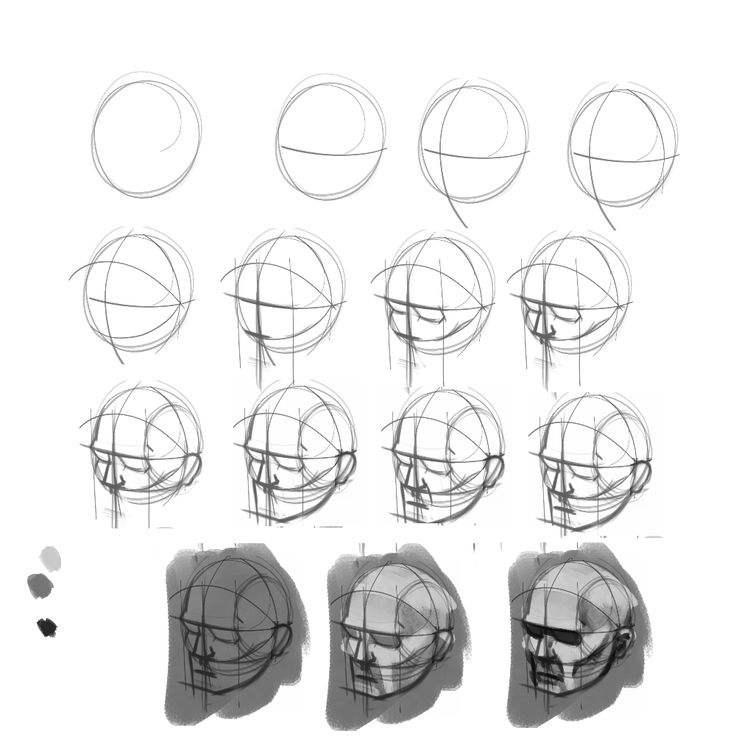 Andrew Loomis Head Drawing Question