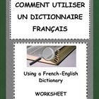 Using a French English Dictionary - Worksheet