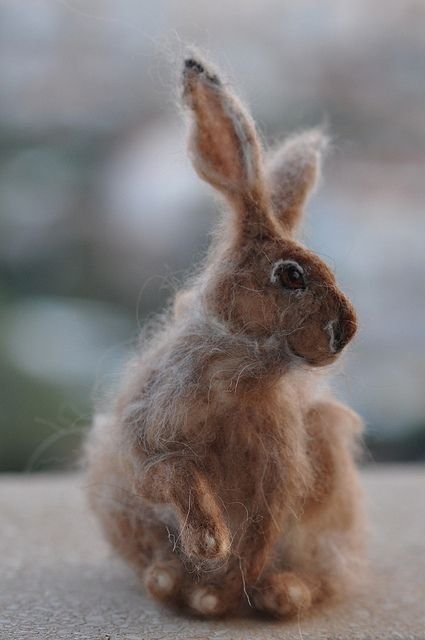 "Beautifully Needle felted Jackrabbit by Daria Lvovsky From the artist ""For to make him as similar as possible to a real one I've used fibers from not less than seven different species: sheep, alpaca, chinchilla,baby camel, rabbit, all those with no paint, mostly natural colors."""