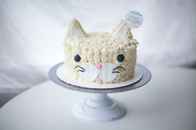 Well heeeeyyyy cat buddy! Aren't you just a fluffy and friendly looking cool little cat! I loved this sweet and cute vanilla buttercream frosted cat cake pal I made for....