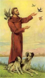 Saint Francis of Assisi.-He was canonized (made a saint) in 1228 by Pope Gregorio IX. Saint Francis is the patron saint of Italy and of animals and nature. His special day of remembrance is every year on 4 October.
