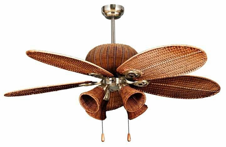 Rattan Fan With Bulb Cup Lights Ceiling Shades Bulb Pendulum