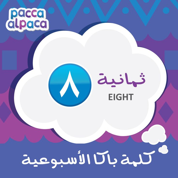 This week Pacca learns how to say eight in Arabic!