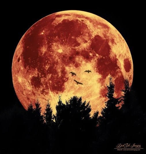 blood moon eclipse quotes - photo #25