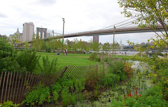 Great Places to Get a PhD in Environmental Psychology, New York, Brooklyn Bridge Park