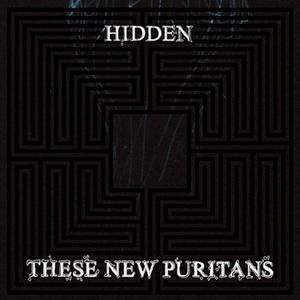 . these new puritans .