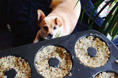 Ketogene, fodmap freundliche & glutenfreie Bagels die innerhalb weniger Minuten zubereitet sind. Sättigend und mit guten Fetten und Ballaststoffen versehen