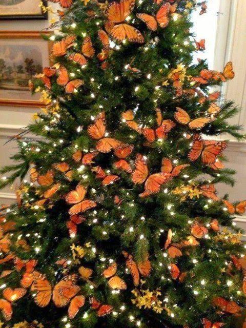 Não sei se a árvore é natural ou artificial. Mas a decoração cheia de borboletas, alguns galhinhos de flores miúdas em tom próximo delas, finalizadas com luzes branquinhas deu um efeito muito elegante. Eu queria esta árvore aqui em casa com certeza. Este tipo de borboleta é encontrada em lojas do tipo 1,99
