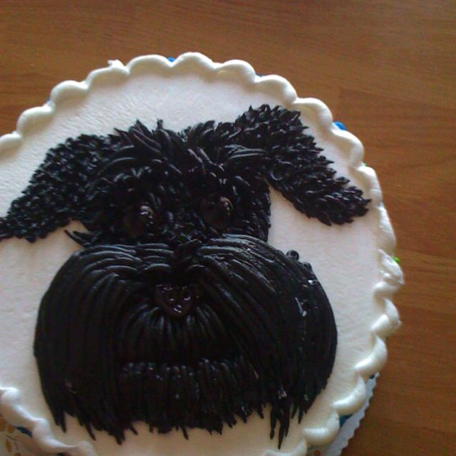 Schnauzer birthday cake made for my husband