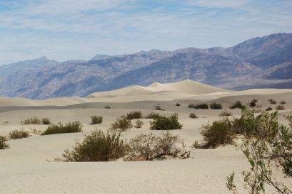 Piaszczyste wydmy – Mesquite Flat Sand Dunes  Dolina Śmierci (Death Valley), Kalifornia, USA