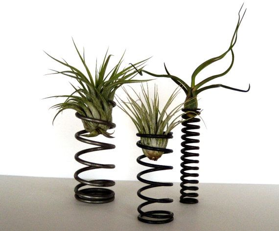 Industrial Springs Air Plant Container  You by OpticalConclusions, $23.00 #small_garden #industrial