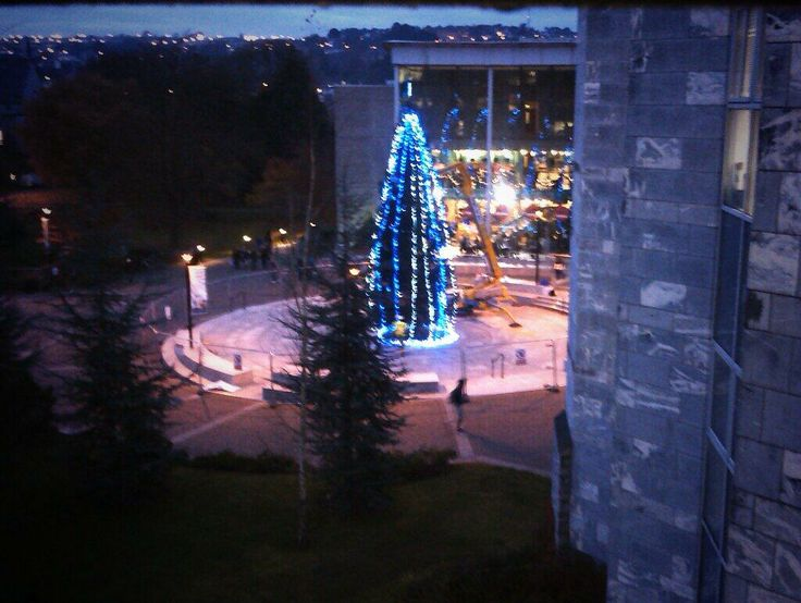 UCC Christmas tree. Tweeted by @conor lowry.