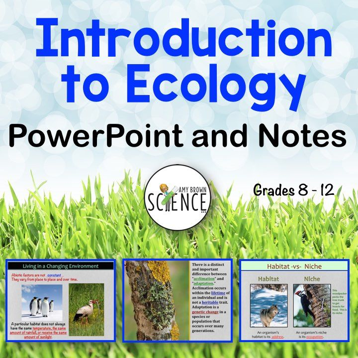 Introduction to Ecology PowerPoint and Notes Science for Secondary