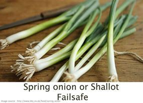 Spring Onions or Shallots: Failsafe refers to foods that are Free of Additives and Low in Salicylates, Amines, Glutamates and Flavour Enhancers
