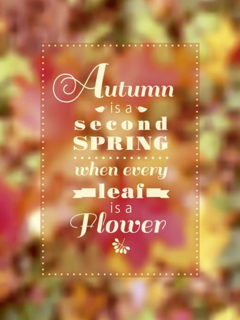 Free vector Autumn is a second spring lettering #24484