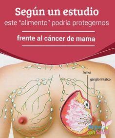 """Según un estudio este """"alimento"""" podría protegernos frente al cáncer de mama En la actualidad el cáncer de mama es uno de los más frecuentes en la mujer, hasta el punto de que, según datos de la Organización Mundial de la Salud (OMS),"""