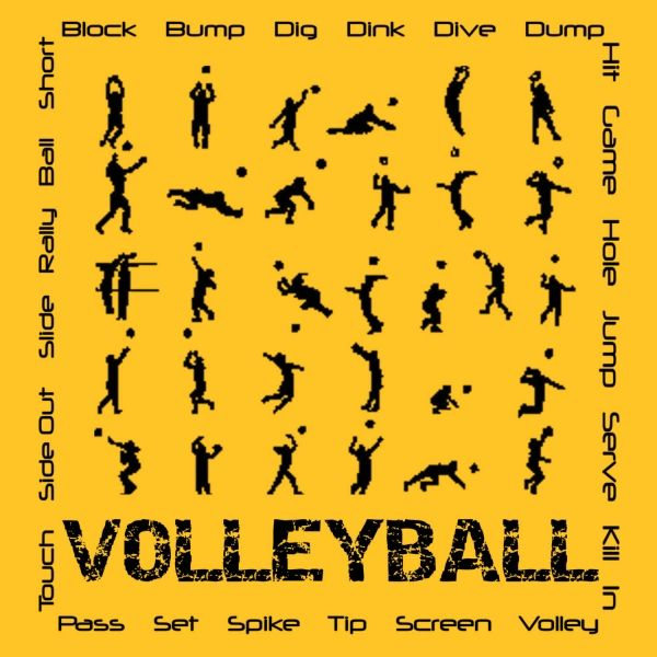 my journey to become a volleyball player Misty: my journey through volleyball and life by misty may-treanor was a fantastic, inspiring biography that gives you an inside look on the life of a professional athlete before and after they become famous.