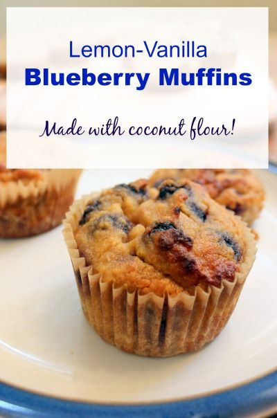 blueberry coconut flour muffins | Health, Home & Happiness