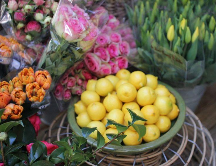 Boathouse - Balmoral Beach - My Kiki Cake - Sydney Food Blog - Flowers and Lemons