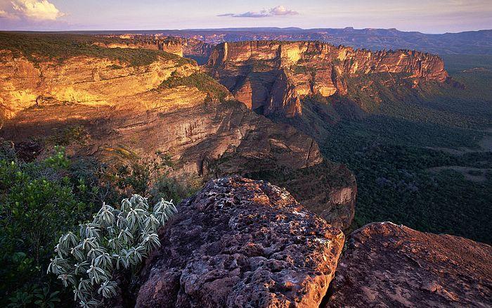 Eyes Go Travel: America and South Africa  - Photo:  Chapada dos Guimaraes  at Mato Grosso, Brazil21