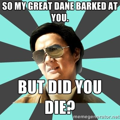 So my Great Dane barked at you. But did you die? - mr chow   Meme ...