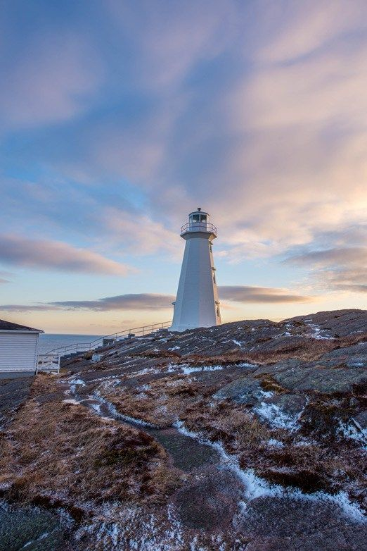 Top Things to Do While Exploring Cape Spear