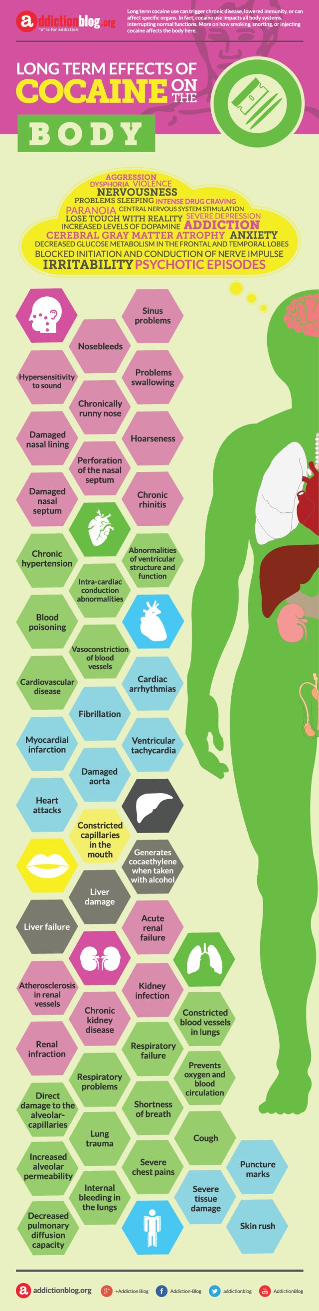 Long term effects of cocaine on the body (INFOGRAPHIC)